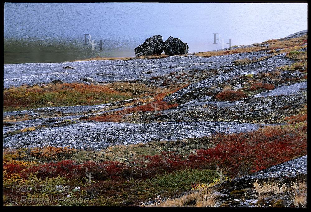 Colorful autumn tundra accents smooth granite outcrops and twin boulders perched by glacial tarn; Tasiusaq Bay, western Greenland