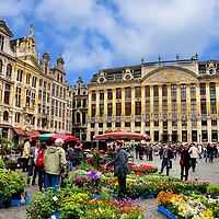 Flower Market and Guildhalls at Grand Place in Brussels, Belgium <br />