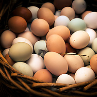 Green, blue, brown and white eggs in one basket.
