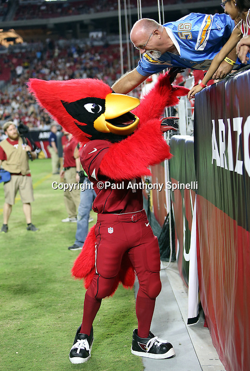 The Arizona Cardinals mascot has some fun with a San Diego Chargers fan during the 2015 NFL preseason football game against the San Diego Chargers on Saturday, Aug. 22, 2015 in Glendale, Ariz. The Chargers won the game 22-19. (©Paul Anthony Spinelli)