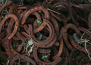 A pile of old horse shoes outside a horsebarn.