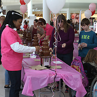 Libby Ezell | BUY at PHOTOS.DJOURNAL.COM<br /> Many people came out to join in all the chocolatey fun at the NEWMS Chocolate Festival Saturday at the Mall at Barnes Crossing