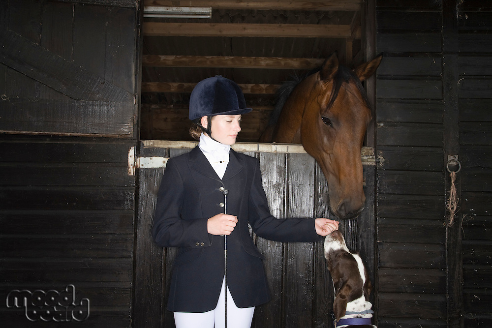 Female horseback rider with horse and dog in stable