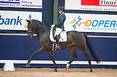 Young Dressage Talents 2017