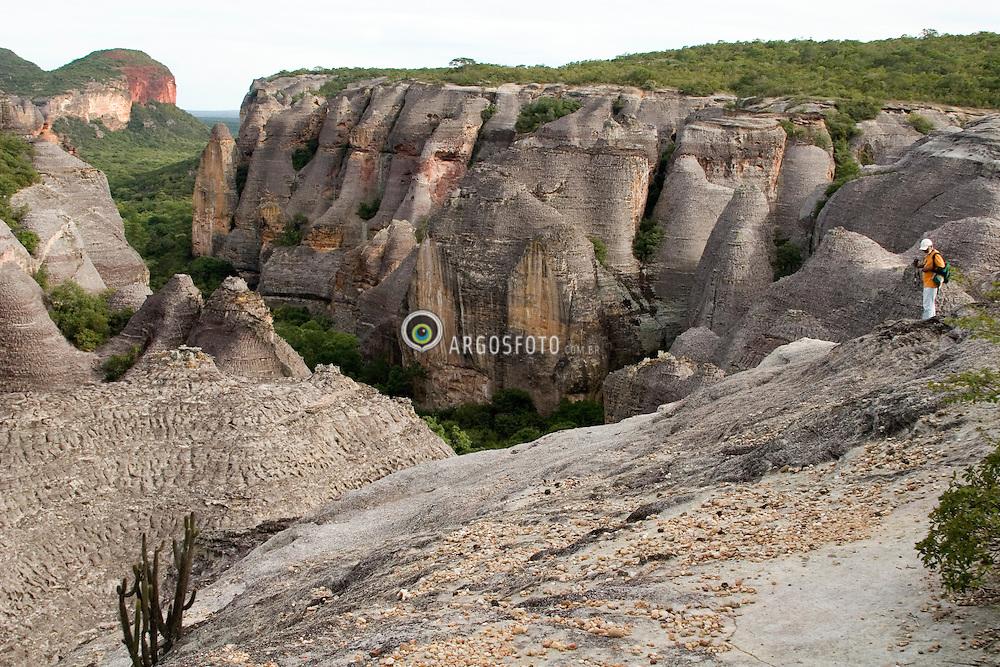 Baixao das Andorinhas, paisagem no Parque Nacional da Serra da Capivara, Patrimonio Historico e Cultural da Humanidade.Planaltos areniticos ou chapadas, vegetacao de caatainga arbustiva. Serra da Capivara National Park in Piaui State. Historical and Cultural Heritage of Humanity. Landscape with sandstone plateaus, hills, canyons from old ages, formed by many kinds of rocks and minerals. Canyons are result of erosion, giving a ruin look. Caatinga vegetation..Foto © Adri Felden/Argosfoto