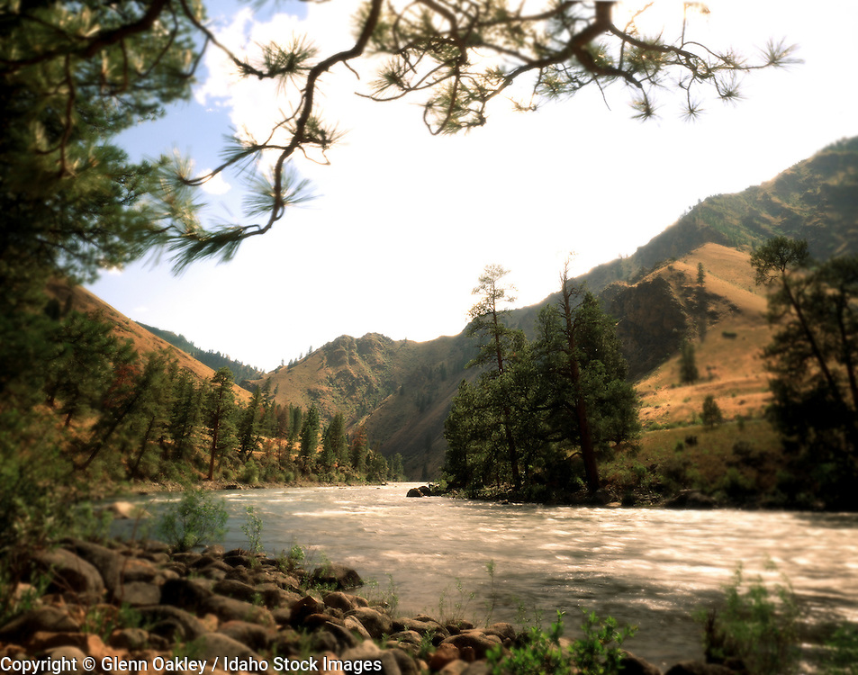 Middle Fork Salmon River, Frank Church River of No Return Wilderness, Idaho