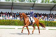 Saskia van Es - Jaccardo<br /> KWPN Kampioenschappen 2019<br /> © DigiShots