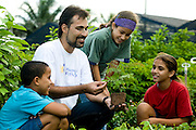 Piranema_RJ, Brasil...Projeto Plantando o Futuro em Piranema. O projeto alem de outras atuacoes, cultiva mudas em geral e ensina educacao ambiental a criancas da regiao...The Plantando  o Futuro project in Piranema. The project  cultivate plants in general and teaches environmental education to children in the region...Foto: BRUNO MAGALHAES / NITRO