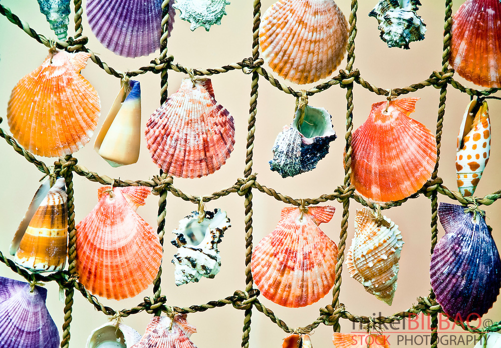 Decorative shells. Fira village. Santorini island, Cyclades islands, Greece, Europe