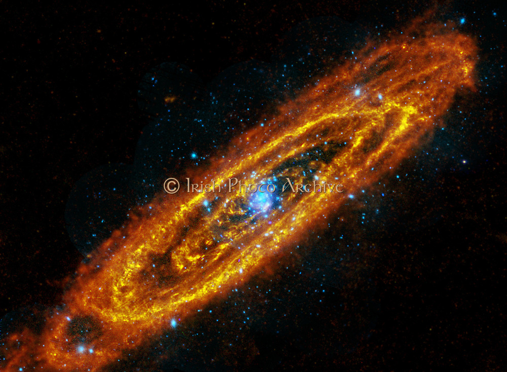 The Andromeda Galaxy, M31, is a spiral galaxy a mere 2.5 million light-years away. Two space-based observatories have combined to produce this intriguing composite image of Andromeda, at wavelengths outside the visible spectrum. The view follows the locations of this galaxy's once and future stars. In reddish hues, image data from the large Herschel infrared observatory traces enormous lanes of dust, warmed by stars, sweeping along Andromeda's spiral arms. The dust, in conjunction with the galaxy's interstellar gas, comprises the raw material for future star formation.
