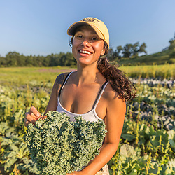 A woman harvests kale on a farm on Kinney Hill in South Hampton, New Hampshire.