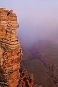 Tipping Point. A Rock balances precariously over a Grand Canyon gorge barely visible in the morning mist.