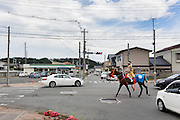 Minami-Soma, Fukushima prefecture, July 25 2015 - A samurai and his horse crssing on the street during Nomaoi festival.<br /> The Soma nomaoi is said to be a 1000-year-old traditional festival. It was held in 2011, a few months after the nuclear disaster, but only a few local horses were available.