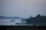 heath landscape during early morning with fog Holland
