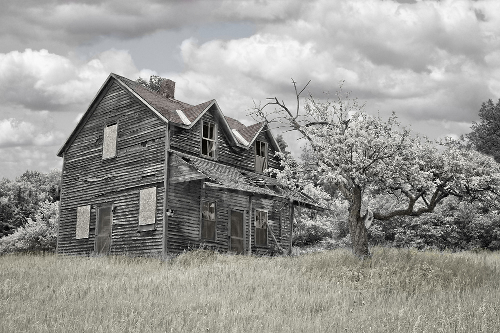 This abandoned farmhouse sat at the top of a long sloping hill covered by high grass, not a bit of paint left to see and a few boarded up windows to keep the weather out. A very old and twisted apple tree in bloom shared company with this leftover from the old farming days. That day I saw many abandoned farms while driving some long loops out through the countryside in that eastern section of the Upper Peninsula of Michigan, not far from the shore of Lake Huron. Why so many? Probably partly because it is so remote and the winters very harsh there. Towns are very small and often thirty or forty miles of forest apart. It would take a lot of fortitude, willpower, and work to make it there and stick it out. At some point, those things may have run out, leaving the farmers to run out too.<br />