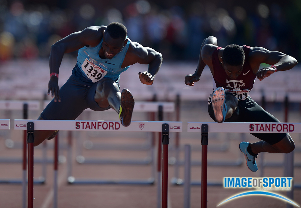 Apr 5, 2014; Stanford, CA, USA; Wayne Davis II of Texas A&M (right) defeats Kevin Craddock to win the 110m hurdles, 13.50 to 13.52, in the 2014 Stanford Invitational at Cobb Track & Angell  Field.