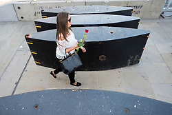 © Licensed to London News Pictures. 26/04/2016. London, UK.  A woman walks through newly installed security barriers  after being handed a rose by members of the 1000RosesLondon group on London Bridge a week after a terror attack killed eight people. The group hopes to promote love and solidarity. Photo credit: Cliff Hide/LNP
