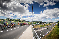 Peloton during last Stage 4 of 24th Tour of Slovenia 2017 / Tour de Slovenie from Rogaska Slatina to Novo mesto (158,2 km) cycling race on June 18, 2017 in Slovenia. Photo by Vid Ponikvar / Sportida