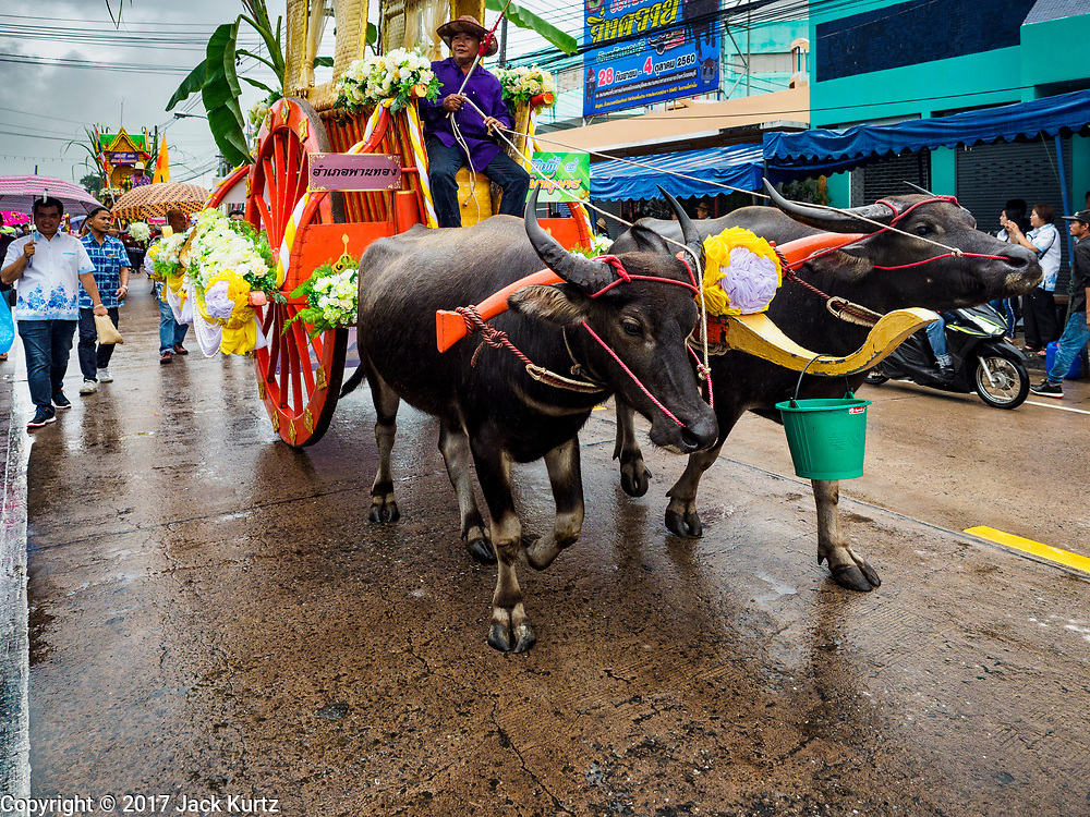 04 OCTOBER 2017 - CHONBURI, CHONBURI, THAILAND: Buffalo carts carry participants in the parade before the buffalo races. Contestants race water buffalo about 100 meters down a muddy straight away. The buffalo races in Chonburi first took place in 1912 for Thai King Rama VI. Now the races have evolved into a festival that marks the end of Buddhist Lent and is held on the first full moon of the 11th lunar month (either October or November). Thousands of people come to Chonburi, about 90 minutes from Bangkok, for the races and carnival midway.   PHOTO BY JACK KURTZ