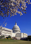 Image of the United States Capitol building in Washington DC, American Northeast