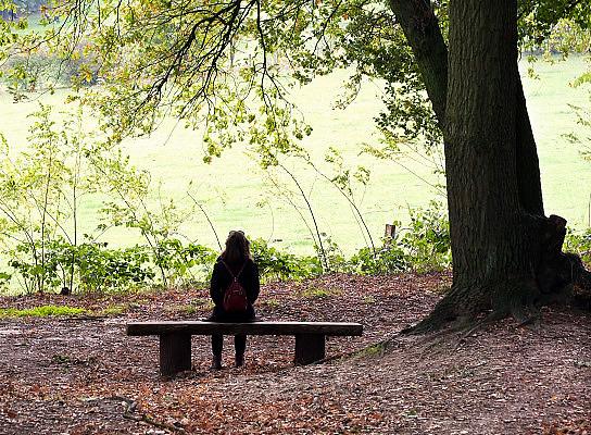 Nederland, Ubbergen, 1-11-2013Een vrouw zit op een bank in het bos en geniet van de omgeving.Foto: Flip Franssen/Hollandse Hoogte