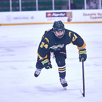 1st year forward, Adela Juzkova (24) of the Regina Cougars during the Women's Hockey Away Game on Fri Jan 11 at University of Saskatoon. Credit: Arthur Ward/Arthur Images