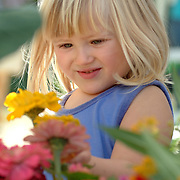 September 29, 2007 -- BATH, Maine. Nina Powers, 4, of Bath, selects her favorite flower at Sheepscot Flower Farm booth at the Bath Farmers Market. Although Bath Farmer's Market will be open on Saturday mornings through the end of October, several vendors are making next week the last one of the season. Photo by Roger S. Duncan.