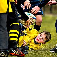 SERIE ROOKIE <br /> Nederland, Hilversum, 14-03-2015.<br /> Rugby <br /> Turven ( 7 &amp; 8- jarigen ). RC 't Gooi - RC Eemland<br /> Spelertje van RC Eemland is getackeld en verliest de bal terwijl een Angry Bird op een kous van een selertje van 't Gooi toekijkt.<br /> Foto : Klaas Jan van der Weij
