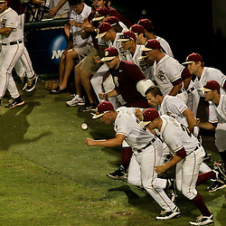 June 03, 2011; Tallahassee, FL, USA; The Florida State Seminoles bench celebrates following a win over the Bethune-Cookman Wildcats in the Tallahassee regional of the 2011 NCAA baseball tournament at Dick Howser Stadium. Mandatory Credit: Derick E. Hingle