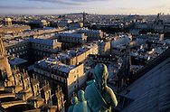France. Paris elevated view from Notre dame cathedral. The apostles looking at the north of Paris. view from the spire of Notre dame cathedral