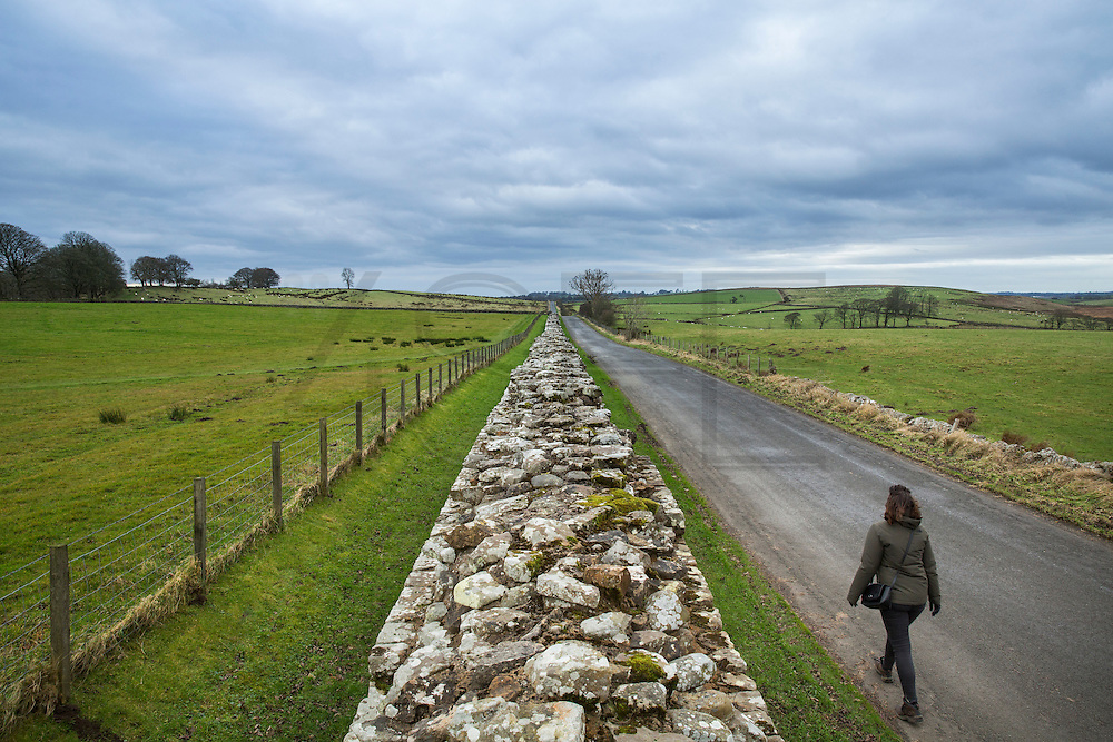 view of the Hadrian's wall near Brampton. a tourist walking alongside the wall.