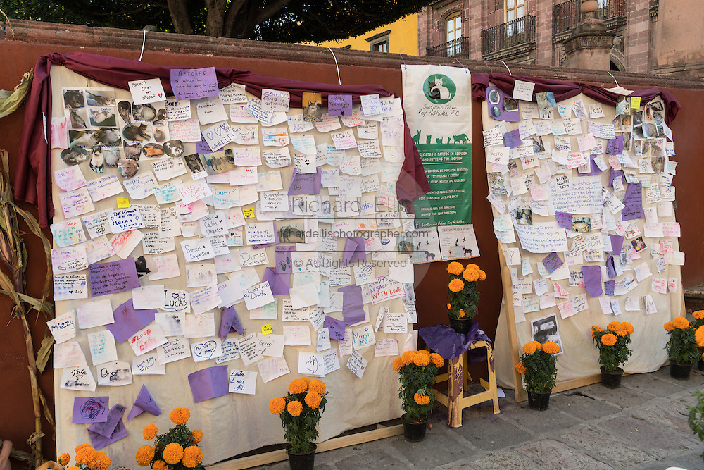 People leave behind messages to remember dead pets during the Day of the Dead festival at the Jardin Principal in San Miguel de Allende, Guanajuato, Mexico. The week-long celebration is a time when Mexicans welcome the dead back to earth for a visit and celebrate life.