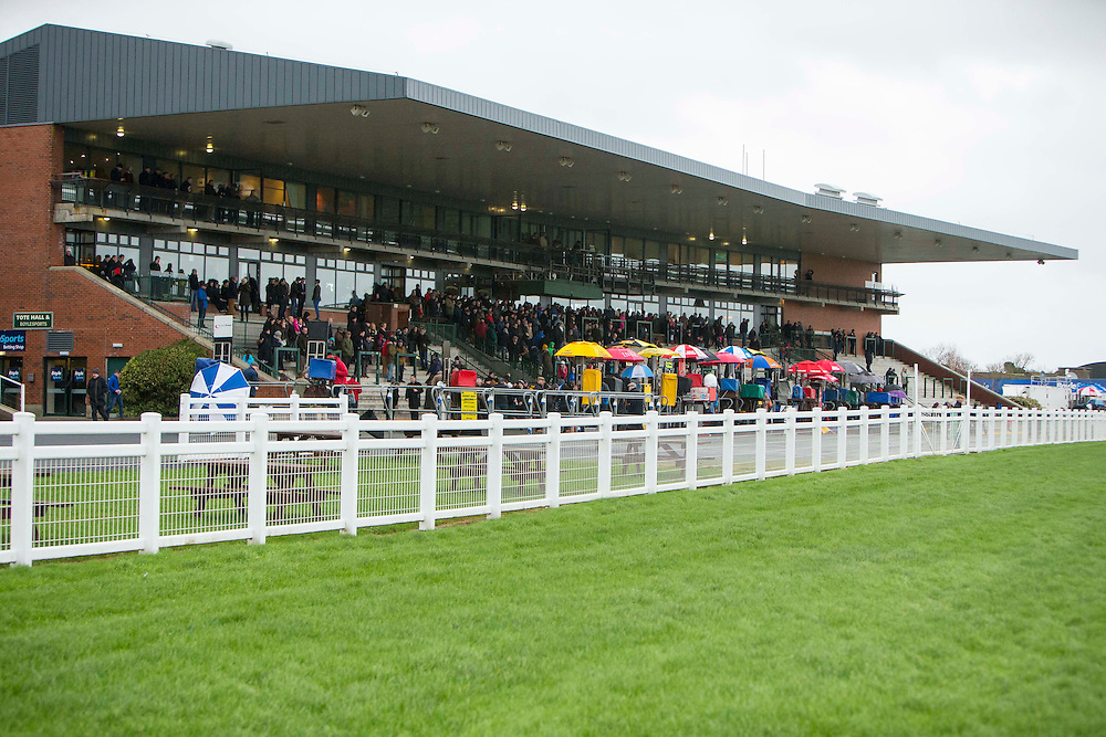 Fairyhouse Racing, 1st January 2016<br /> A general view of the Fairyhouse stand during the New Years Day meeting<br /> Photo: David Mullen /www.cyberimages.net / 2016