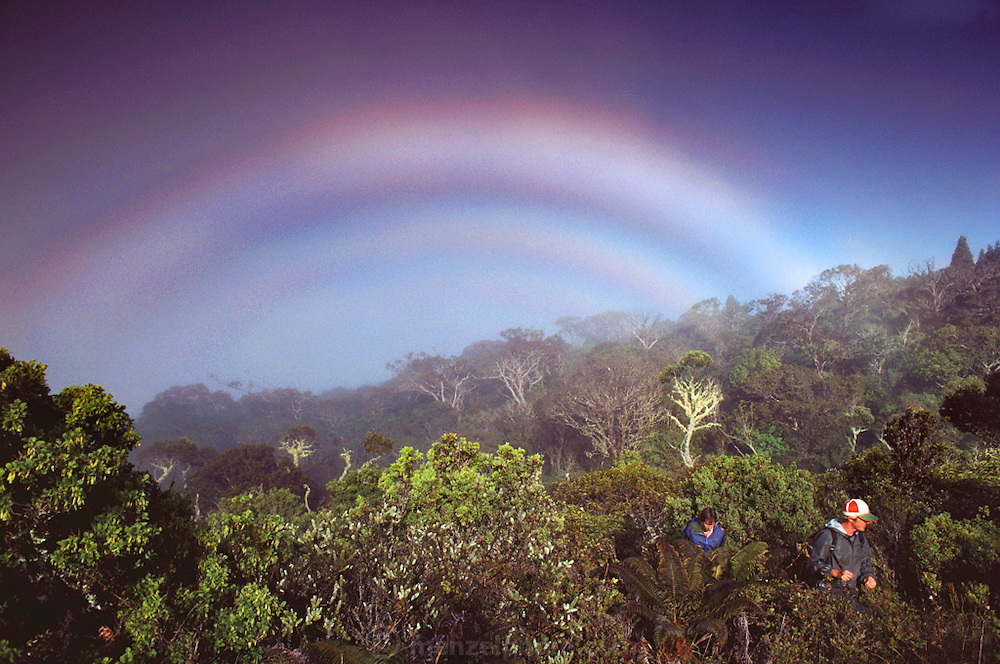 Weather: Rainbow over nature preserve researchers Holt and Quizenberry. Waikamoi, island of Maui, Hawaii. Rainbows occur when the observer is facing falling rain or mist but with the sun behind them. White light is reflected inside the raindrops and split into its component colors by refraction. (1984)