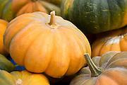 Pumpkin, Musquee de Provence, and squash for sale at roadside stall in Pays de La Loire, France