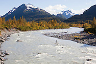 Stand up paddlers floating down the Placer River which drains from the Spencer Glacier down to Turnagain Arm, Alaska. This unique river paddle is accessed by riding a train on the Alaska Railroad into the Kenai Mountains. It's then possible to float the Placer River back out of the mountains to the sea.