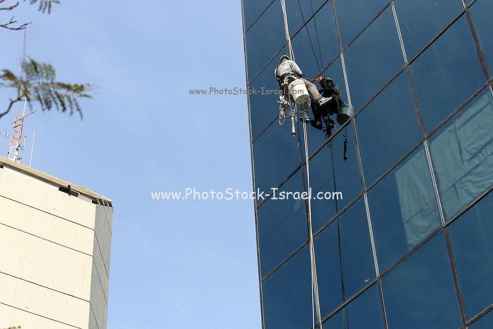 A man cleaning windows of a high rise building while tied to a rope