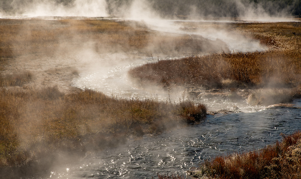 steam rises into cold air from a thermal creek in Yellowstone