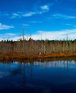 Reflections in Pemaquid Pond,  Pemaquid, Maine