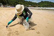 02 AUGUST 2013 - KOH SAMET, RAYONG, THAILAND: A volunteer uses a table spoon to pick up bits of sand contaminated with oil on Ao Prao beach on Koh Samet island. About 50,000 liters of crude oil poured out of a pipeline in the Gulf of Thailand over the weekend authorities said. The oil made landfall on the white sand beaches of Ao Prao, on Koh Samet, a popular tourist destination in Rayong province about 2.5 hours southeast of Bangkok. Workers from PTT Global, owner of the pipeline, up to 500 Thai military personnel and volunteers are cleaning up the beaches. Tourists staying near the spill, which fouled Ao Prao beach, were evacuated to hotels on the east side of the island, which was not impacted by the spill. Officials have not said when Ao Prao beach would reopen. PTT Global Chemical Pcl is part of state-controlled PTT Pcl, Thailand's biggest energy firm.    PHOTO BY JACK KURTZ