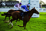 Raasel ridden by Jim Crowley and trained by M P Tregoning, Amarillo Star ridden by Aled Beech and trained by C Fellowes - Ryan Hiscott/JMP - 16/10/2019 - PR - Bath Racecourse - Bath, England - Race Meeting at Bath Racecourse