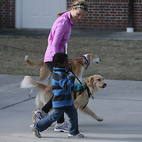 Meredith McCumbee walks with Aaron McCumbee,4, and their dog Hattie in the Paws for People 5K. (Jason A. Frizzelle)