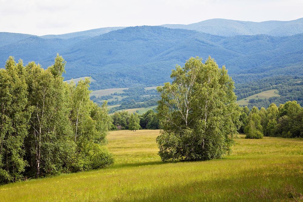 Hilly landscape near Nova Sedlica, Poloniny National park, Western Carpathians, Eastern Slovakia, Europe