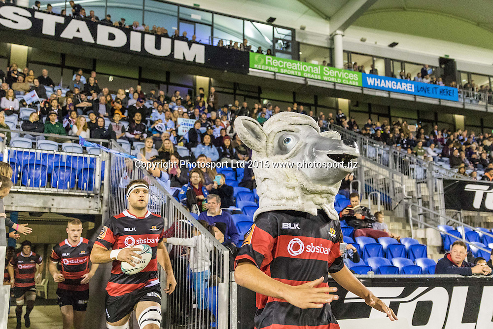 Canterbury's mascot leads out the team. Northland v Canterbury, Mitre 10 Cup rugby, Toll Stadium, Whangarei, New Zealand. Saturday 03 September, 2016. Copyright photo: Heath Johnson / www.photosport.nz