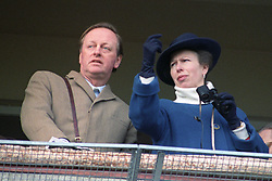 The Princess Royal watches the racing at Cheltenham, accompanied on the Royal balcony by Andrew Parker Bowles.