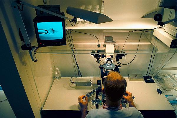 Nederland, Nijmegen, 14-11-2007Beeld op monitor van microscoop waar een eicel gefixeerd wordt om daarna door de laborant kunstmatig bevrucht te worden.Foto: Flip Franssen