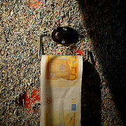 March 27, 2012 - Dublin, Ireland: A fifty euro bill toilet paper is seen hanging in a wall at the toilet area of the Billion Euro House art installation by the Irish artist Frank Buckley. ..Worthless euros, taken out of circulation and shredded by Irelands Central Bank, formes the interior walls of an apartment that Mr. Buckley does not own in a building left vacant by the countrys economic ruin...The artist decided to call the apartment  built from thousands of bricks of shredded, decommissioned cash (each brick contains, roughly, what used to be 50,000 euros)  the Billion Euro House. He reckons that about 1.4 billion euros actually went into it, but the joke, of course, is that it is worth simultaneously so much and so little...A large gravestone beside the main door, announces that Irish sovereignty died in 2010, the year that the government accepted an international bailout so larded with onerous conditions that the Irish will be paying for it for years to come. (Paulo Nunes dos Santos/Polaris)