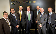 Standard Bank group 081013