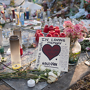TUESDAY, FEBRUARY 27- 2018---PARKLAND, FLORIDA--<br /> Candles and flowers put down by mourners at Marjory Stoneman Douglas High School form part of the many mementos and offerings for the victims of February 14 school massacre.<br /> (Photo by Angel Valentin/FREELANCE)