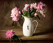 Pink Peonies in white metal pitcher